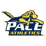 Pace University,WD2